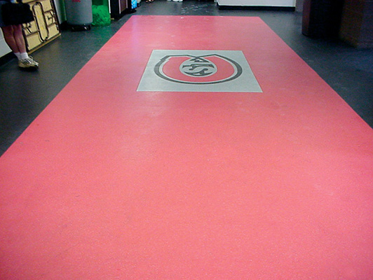 St. Cloud State University - Ice Arena Flooring