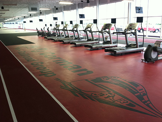 Rj Corman Fitness - Workout Room Flooring