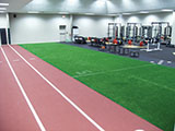 INDOOR ARTIFICIAL TURF