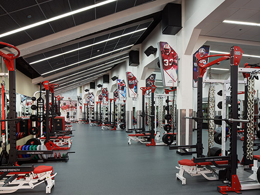 Strength Training Flooring - University WI Madison